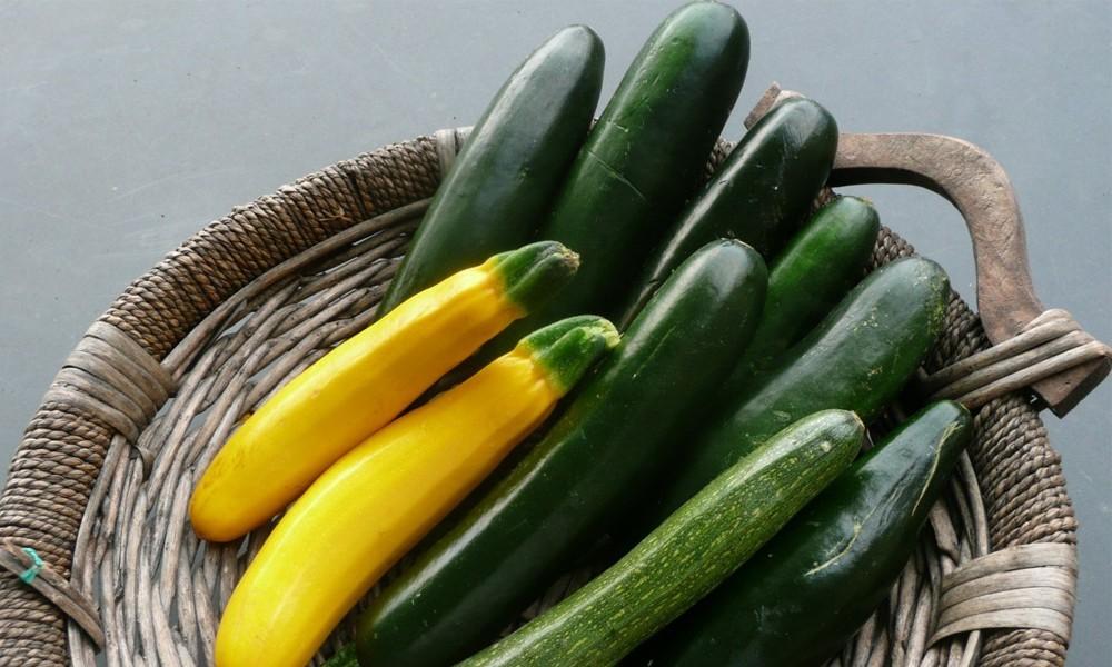 овощ цукини для похудения