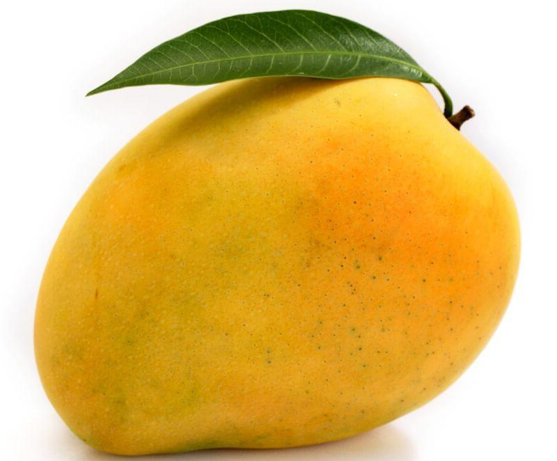 Mango фрукт